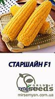 "Кукуруза сахарная ""Старшайн"" F1  100 000  с. Сингента, (Syngenta)"