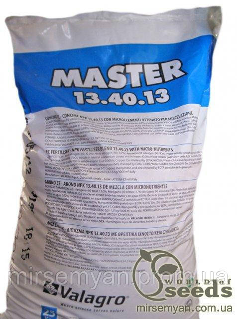 Купить МАСТЕР NPK 13.40.13 / MASTER NPK 13.40.13, Valagro 25 кг