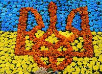 График работы на День Конституции Украины.