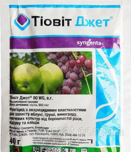 Тиовит Джет 40 г (фунгицид-акарицид)
