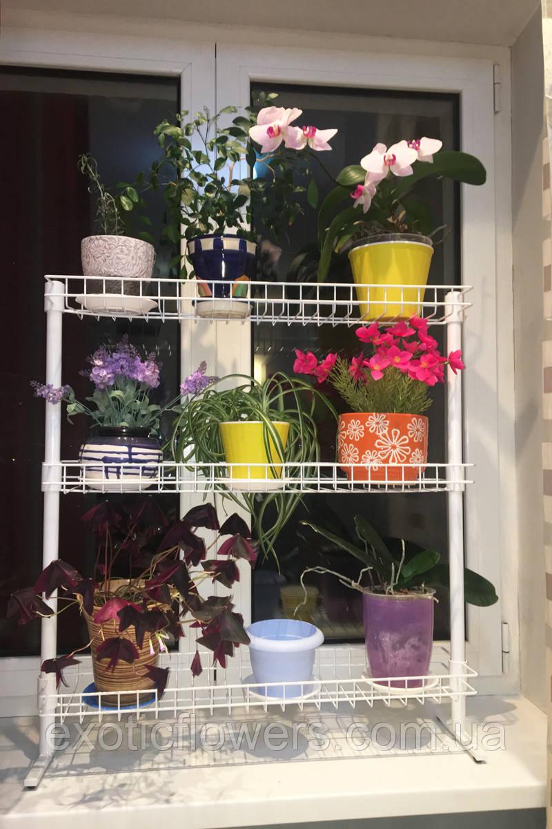 """Підставка для квітів віконна """"Азалія"""""""