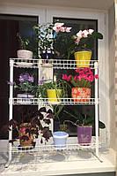 Азалия, подставка для цветов