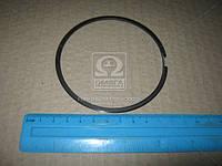 Кольцо поршневое маслосъемное Cummins ISF 2,8L (пок. ГАЗ) (арт. .4976251F), AAHZX
