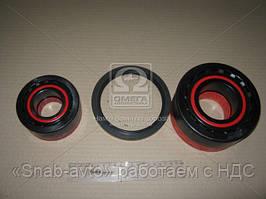 Подшипники ступицы SmartSet (572813A+32310A) (производство FAG) (арт. 723703610), AGHZX