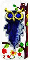 Чехол-накладка TOTO TPU Case Decorative Stones IPhone 5/5S/SE Owls Purple, фото 1