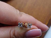 Золотые серьги-гвоздики (пуссеты), фото 1