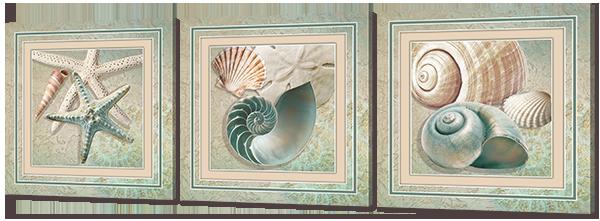 Модульная картина Морские ракушки