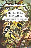 Кайгородов Дм. Из царства пернатых: Популярные очерки из мира русских птиц