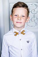 Детский галстук - бабочка из дерева Мастер