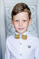Детский галстук-бабочка из дерева Котики