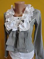 Блузочка женская весенняя с длинным рукавом (Арт.4144), фото 1