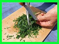 Ножницы для зелени с 5 лезвиями!Акция