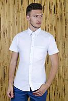Рубашка с коротким рукавом белая приталенная, фото 1