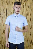 Рубашка с коротким рукавом голубая звездочки