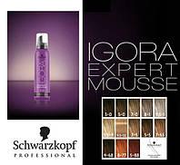 IGORA EXPERT MOUSSE - настоящий цвет превосходства!