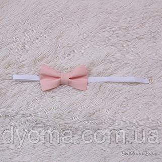 Бабочка галстук универсальная (персик), фото 2