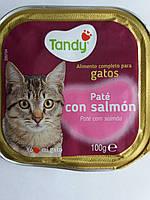 Корм для кошекTandy паштет с лососем 100г.Испания