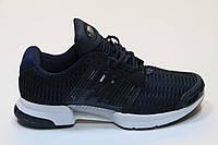 Кроссовки Adidas ClimaCool blue (синий)