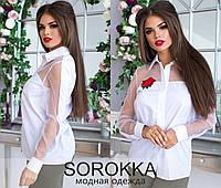 Блуза женская норма  р. 42-46