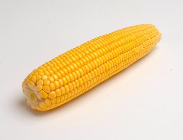 Купить Семена кукурузы ПР39Б76