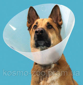 Воротник ветеринарный Collar S, высота 15 см, диаметр 31-38 см, пластик