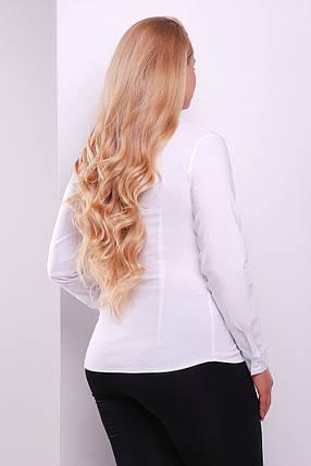 GLEM блуза Норма-Б д/р, фото 2