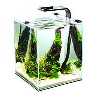 Аквариум для разведения креветок AquaEl Shrimp Set Smart , черный, 20 л