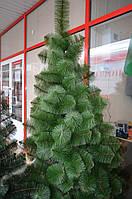 Сосна зелённая МИКС 1,2м