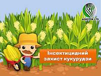 Інсектицидний захист кукурудзи