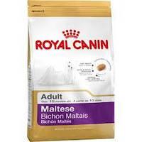 Royal Canin сухой корм для собак породы мальтийская болонка от 10 месяцев - 500 г
