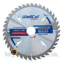 Пильный диск WellCut Standard 300x32  48Т