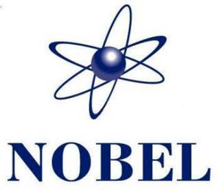 Газовые котлы Nobel
