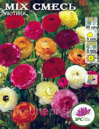 Лютик Ranunculus Mixed, фото 2