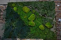 """Панно """"Форест"""" з стабілізованого моху та інших стабілізованих рослин, фото 1"""