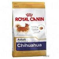 Royal Canin сухой корм для собак породы чихуахуа старше 8 месяцев - 1,5 кг