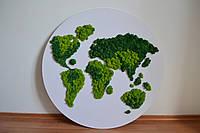 """Панно """"Карта світу"""" з стабілізованого моху Ягель, фото 1"""