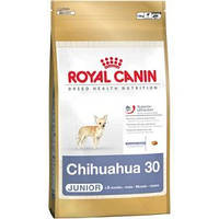 Royal Canin сухой корм для собак породы чихуахуа до  8 месяцев - 500 г