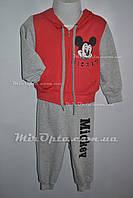 Детский спортивный костюм (р. 2 - 6 лет) купить оптом в Украине