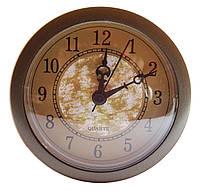 Часовая капсула Серебро 100 мм