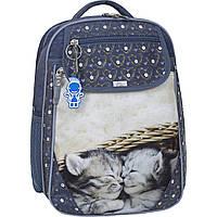 Украина Рюкзак школьный Bagland Отличник 20 л. 321 сірий 165к (0058070), фото 1
