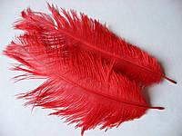 Перо страуса. Красное, от 15 до 23 см