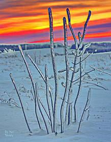 Фото пейзажев Сумщины. Печать на холсте 50х70