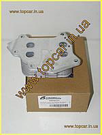 Масляный радиатор Citroen Berlingo 1.6HDI 05-  Thermotec D4P001TT