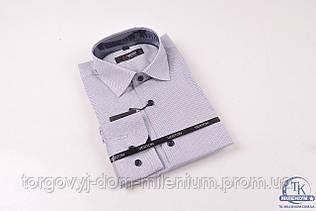Рубашка для мальчика (Slim Fit) Verton AR352-2 Размер:41