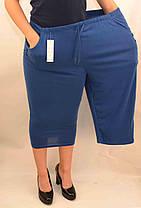 Бриджи женские трикотажные очень больших размеров, фото 2