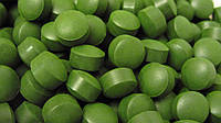 Состав и полезные свойства хлорелла (chlorella)