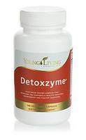 Ферменты для пищеварения и детоксикации Detoxzyme Young Living 180шт