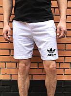 Светлые летние мужские шорты Адидас реплика