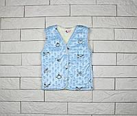Утепленная жилетка голубым цветом на кнопках для мальчика, фото 1
