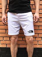 Летние шорты спортивные The North Face / тнф мужские